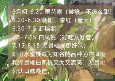 阳山水蜜桃几月份上市