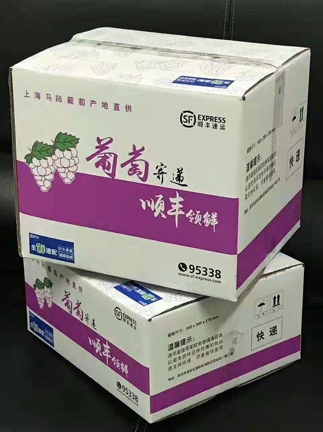 """""""南汇水蜜桃""""今起上市 新区品牌瓜果成""""正宗""""代名词"""